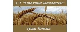 svetlin_ilchovski