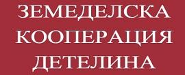zk_detelina