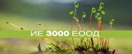ie_3000