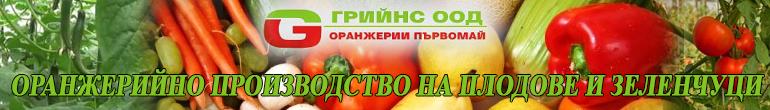 -банер-ГРИЙНС-Първомай-1