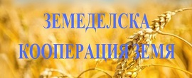 screenhunter_302-nov-11-15-23