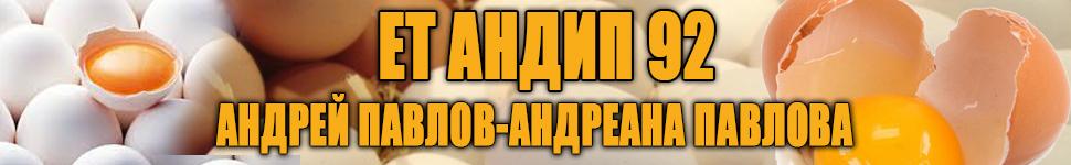 -банер-ЕТ-АНТИП-92-1