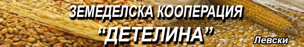 -банер-ЗК-ДЕТЕЛИНА-Левски-1