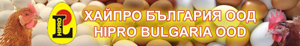 -банер-ХАЙПРО-БЪЛГАРИЯ-2