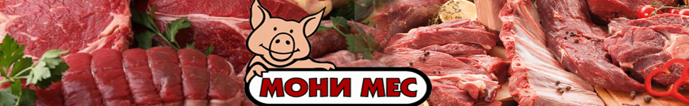 -банер-МОНИ-МЕС-1