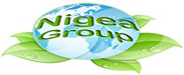 logo_transparent-1