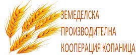 gallery_1238_53_175546