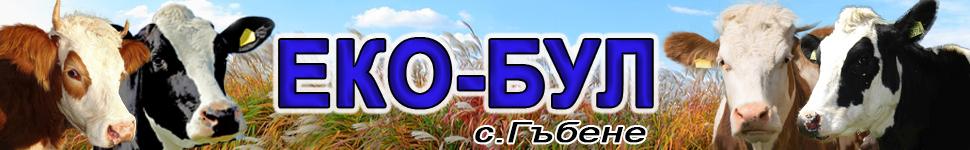 -банер-ЕКО-БУЛ-1