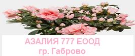 ScreenHunter 639