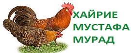 rz89yivxmea1v54y5il