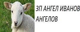 8b274cc3c17649c3f7bc8dabc0ae4c33