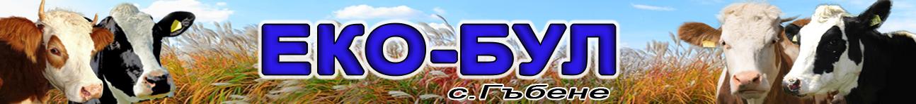 -банер-ЕКО-БУЛ-2