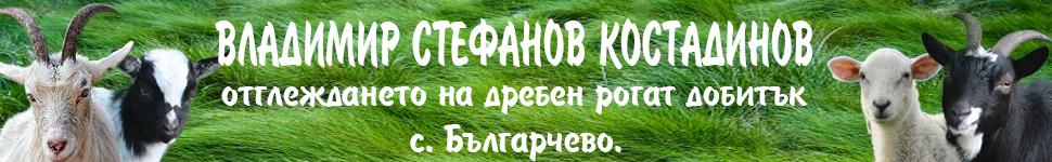 -банер-ВЛАДИМИР-СТЕФАНОВ-КОСТАДИНОВ-3