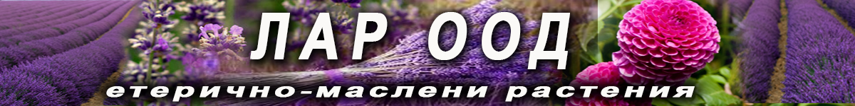 -банер-ЛАР-2